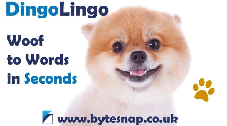 DingoLingo Android App: Woof to Words in Seconds